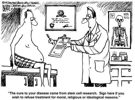 Stem Cell Cartoon